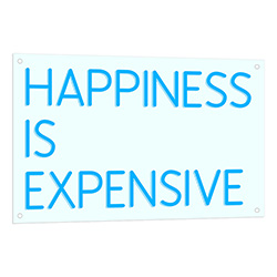 Happiness Is Expensive Neon Sign