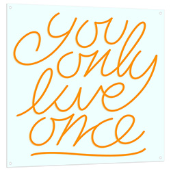 You Only Live Once LED Sign