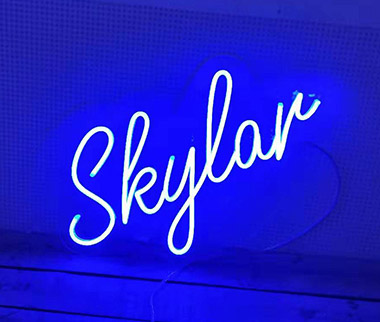 Clear Contoured Backing LED Neon Sign